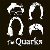 The Quarks by Quarks
