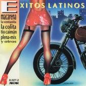 Exitos Latinos Uruguay de Various Artists