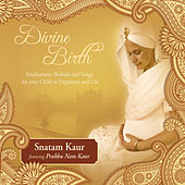 Divine Birth by Various Artists