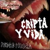 Cripta y Vida de Pedropiedra