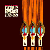 Electric Monkey Sessions by New Cool Collective