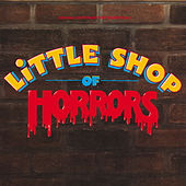 Little Shop Of Horrors (Original Motion Picture Soundtrack) de Various Artists