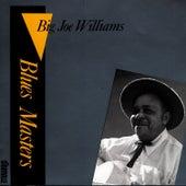 Blues Masters Vol. 2 de Big Joe Williams