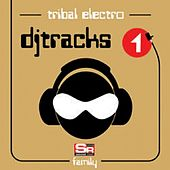 Dj Tracks Vol.1 - Tribal Electro Family by Various Artists