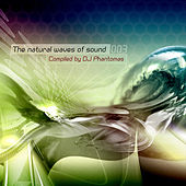The Natural Waves of Sound Vol.3 by Various Artists