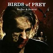 Sulfur And Semen von BIRDS OF PREY