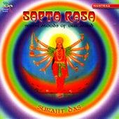 Saeta Rasa: Seven Moods of Our Mind by Surajit Das