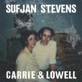 Carrie & Lowell di Sufjan Stevens