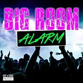 Big Room Alarm Vol. 1 von Various Artists