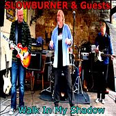 Walk in My Shadow by Various Artists