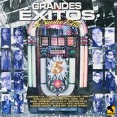 Grandes Éxitos a Nuestro Estilo, Vol. 5 by Various Artists