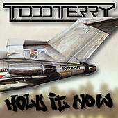 Hold It Now by Todd Terry
