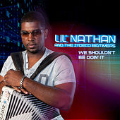 We Shouldn't Be Doin' It de Lil Nathan And The Zydeco Big Timers