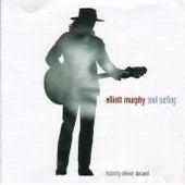 Soul Surfing by Elliott Murphy