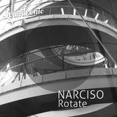 Rotate von Narciso
