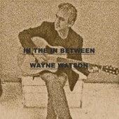 In the in Between by Wayne Watson