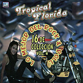Lo Mejor del Rock & Roll, Vol. 4 by Tropical Florida