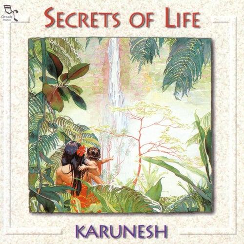 Secrets Of Life by Karunesh