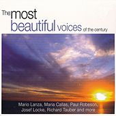 The Most Beautiful Voices of The Century von Various Artists
