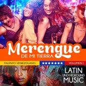 Talento Venezolano, Vol. 1: Merengue de Mi Tierra de Various Artists