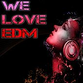 We Love EDM by Various Artists