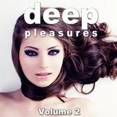 Deep Pleasures, Vol. 2 by Various Artists
