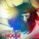 Adventures in House de Various Artists