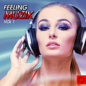 Feeling Muzik, Vol. 1 by Various Artists