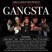 Gangsta II - The Singles von Various Artists