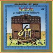 Lo Mejor de su Folklore, Vol. 4 (Bolivia: Colección de oro) de Various Artists