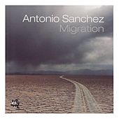 Migration by Antonio Sanchez