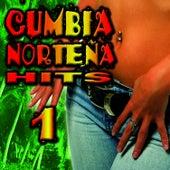 Cumbia Norteña Hits 1 by Cumbia Sabrosa