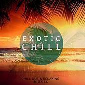 Exotic Chill, Vol. 1 (Chillout & Relaxing Music) by Various Artists