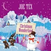 Joe Tex in Christmas Wonderland by Joe Tex