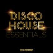 Disco House Essentials - EP fra Various Artists