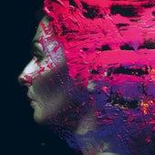 Hand Cannot Erase de Steven Wilson