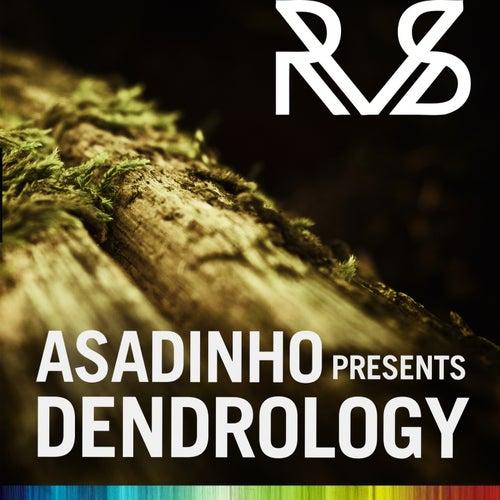 Asadinho Presents Dendrology by Various Artists