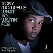 What You Waitin' For de Tony Momrelle