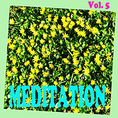 Meditation, Vol. 5 by Various Artists