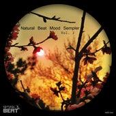 Natural Beat Mood Sampler, Vol. 2 by Various Artists