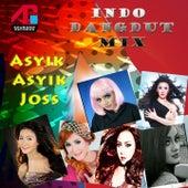 Indo Dangdut Mix: Asyik Asyik Joss by Various Artists