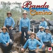 El Gallo Celoso by Banda Camino
