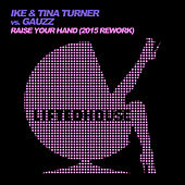 Raise Your Hand (2015 Rework) de Ike and Tina Turner