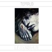 Templo (Remasterizado) by Luis Eduardo Aute
