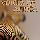 Voices of Africa de Various Artists