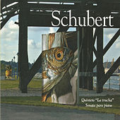 Schubert - Sonata para Piano von Elisabeth Leonskaja