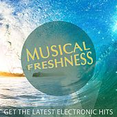 Musical Freshness, Vol. 1 (Get the Latest Electronic Hits) by Various Artists