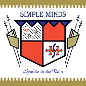Sparkle In The Rain von Simple Minds