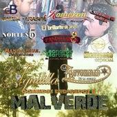 Corridos Dedicados a Malverde by Various Artists