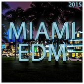 Miami EDM 2015 - EP de Various Artists
